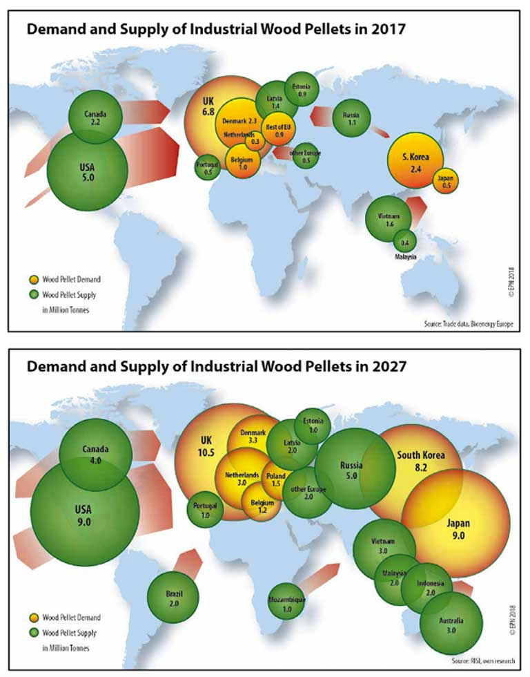 U 2017. potražnja za industrijskim drvenim peletom premašila je 14 miliona tona. Do 2027. godine očekuje se da će se potražnja više nego udvostručiti na preko 36 miliona tona. Najveći porast sagorevanja biomase do 2027. godine očekuje se u Evropi, Japanu i Južnoj Koreji, sa novo ciljanim izvornim šumama u Brazilu, Mozambiku i Australiji. Slika ljubaznošću udruženja Environmental Paper Netvork.